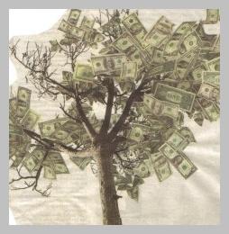 money-tree-2-300x257